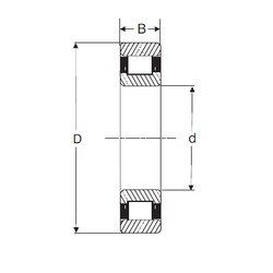 65 mm x 120 mm x 31 mm  SIGMA N 2213 cylindrical roller bearings