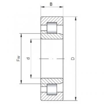 65 mm x 120 mm x 31 mm  ISO NJ2213 cylindrical roller bearings