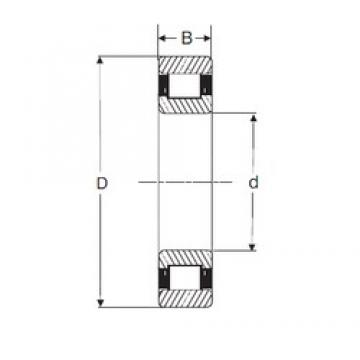 40 mm x 90 mm x 33 mm  SIGMA N 2308 cylindrical roller bearings