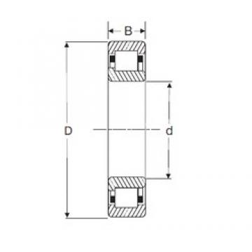 65 mm x 120 mm x 31 mm  SIGMA NJ 2213 cylindrical roller bearings